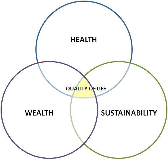 Venni Vidi Vici Rad Quality Of Life Diagram Reader Area