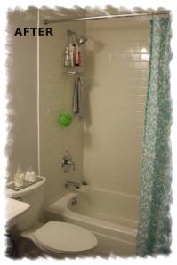 18903 Bath 2.2 After