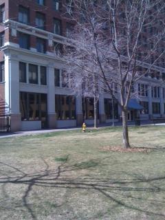 Fulton St. Park II