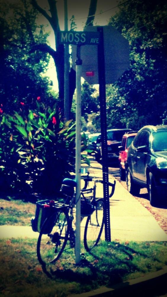 Bike Moss